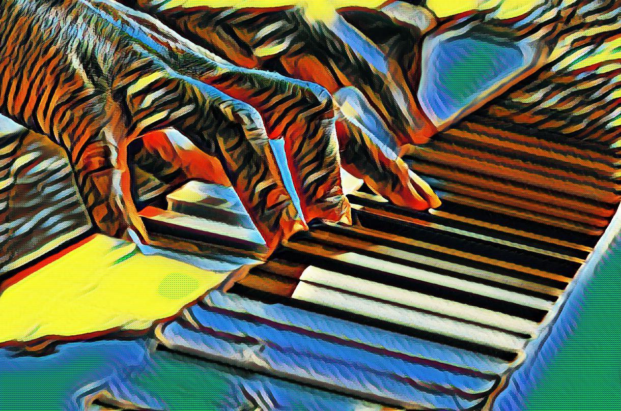 vis cu pian